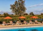 piscine-détente-camargue-auberge-cavaliere-du-pont-des-bannes (19)